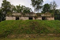 Mundo Perdido, Guatemala. Mundo perdido, Tikal, Guatemala, South America Stock Photography
