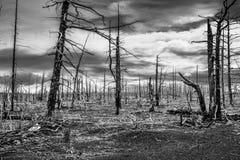 mundo Posts-apocalíptico en Kamchatka fotografía de archivo libre de regalías