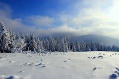 Mundo sob a neve nas montanhas Imagem de Stock