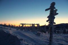 Mundo sob a neve no por do sol Imagens de Stock Royalty Free