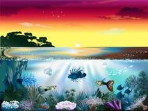 Mundo subacuático ilustración del vector