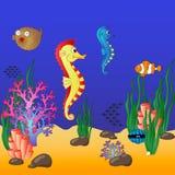 Mundo subacuático con los corales y los pescados flotantes Fotografía de archivo libre de regalías