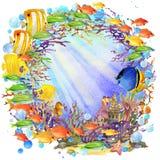 Mundo subacuático arrecife de coral de los pescados ejemplo de la acuarela para los niños Foto de archivo libre de regalías