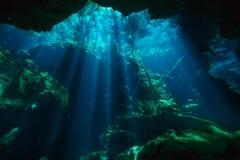 Mundo subaquático bonito do cenote de Azul imagens de stock royalty free
