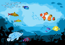 Mundo subaquático do oceano com animais tropicais Imagem de Stock