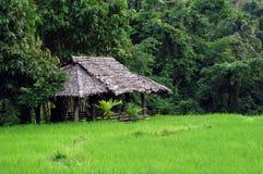 Mundo verde en Maehongson, Tailandia Imagenes de archivo