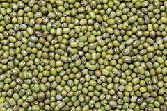 Mung bean. Full-screen close-up background Royalty Free Stock Image