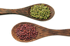 Mung Bean and Azuki Bean Royalty Free Stock Images