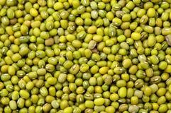 Mung bean background Royalty Free Stock Photos