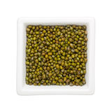 Mung bean Stock Photography