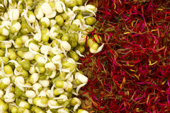 Mung bean and beetroot germinated sprouts Stock Photo