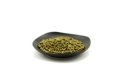 Mung bean. Belongs to legume, cowpea, scientific name is Vigna radiata (Linn.) Wilczek. Origin in India, Burma area.Now the East Asian countries is widely Stock Image