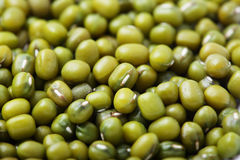 Mung bean close up. Close up of Green bean or mung bean background. Agriculture product, food Stock Images