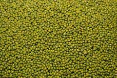 Mung Bean. Green bean or mung bean background Royalty Free Stock Photo