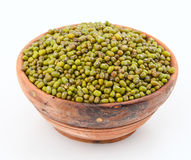 Mung bean Stock Image