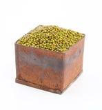 Mung bean Stock Images