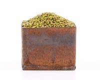 Mung bean Stock Photography