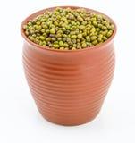Mung bean Royalty Free Stock Photo