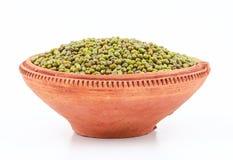 Mung bean Royalty Free Stock Photography