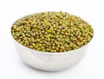 Mung bean Royalty Free Stock Images