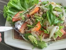 Mung Bean Noodle Spicy Salad foto de stock royalty free
