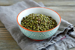 Mung Bean in a patterned bowl Stock Image