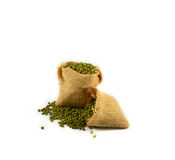 Mung bean sacks Stock Photography
