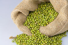 Mung bean seeds Stock Photo