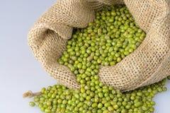 Mung bean seeds Stock Photo