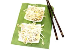 Mung bean sprouts with chopsticks Royalty Free Stock Photography