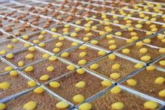 Mung Bean Thai Custard Dessert Recipe (Khanom Maw Kaeng) royalty free stock image