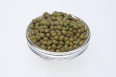 Mung bean, Vigna radiata Stock Images
