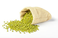 Mung bean Stock Images