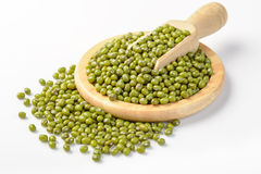 Mung bean Royalty Free Stock Images