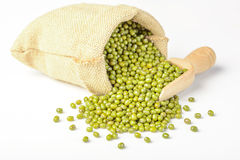 Mung bean. On the white background Stock Photos