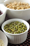Mung bean in white cup Royalty Free Stock Images
