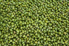 Mung Beans Royalty Free Stock Photography