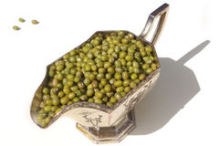 Mung Beans In Container. Mung beans in metal contain against wihite background Stock Photo