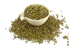 Mung beans in cup white Stock Image