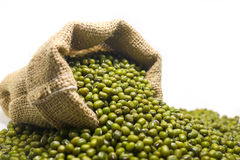 Mung beans in hemp sack bag on white background. Royalty Free Stock Photography