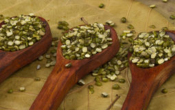 Mung beans Royalty Free Stock Images