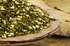 Mung beans Royalty Free Stock Photo
