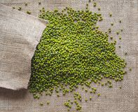 Mung beans. Ingredient for healthy vegetarian meals. stock photo
