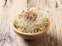Mung beans and lentil sprouts Stock Photo