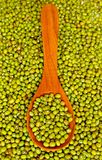 Mung beans over wooden spoon Stock Image