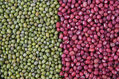 Mung beans and red beans Stock Image
