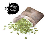 Mung beans in sackcloth Stock Photos