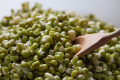 Mung beans and spoon close up Royalty Free Stock Photos