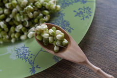 Mung beans and spoon on a wooden table close up Stock Photography