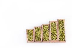 Mung beans, statistical figure - Vigna radiata. Top view. Mung beans, Statistical figure - Vigna radiata Stock Image
